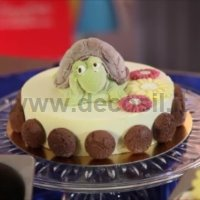Turtle Turbo Chocolate Mould