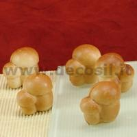Small Mushrooms Mould