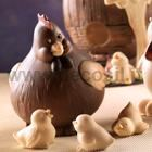 Hen CoccaChicken Chocolate Mould