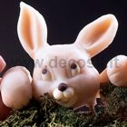 Bunny Snout mould